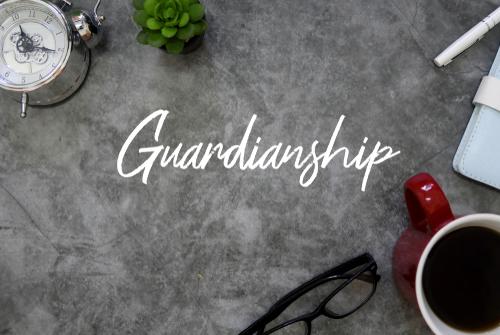 guardianship nj how to